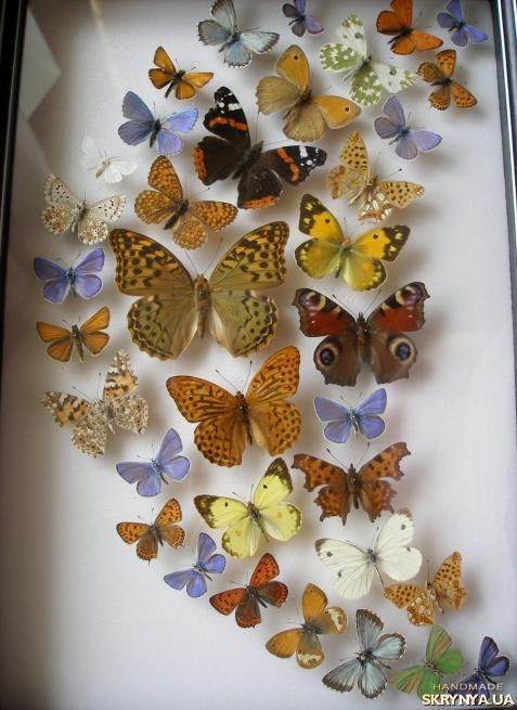Панно из бабочек на стену своими руками фото