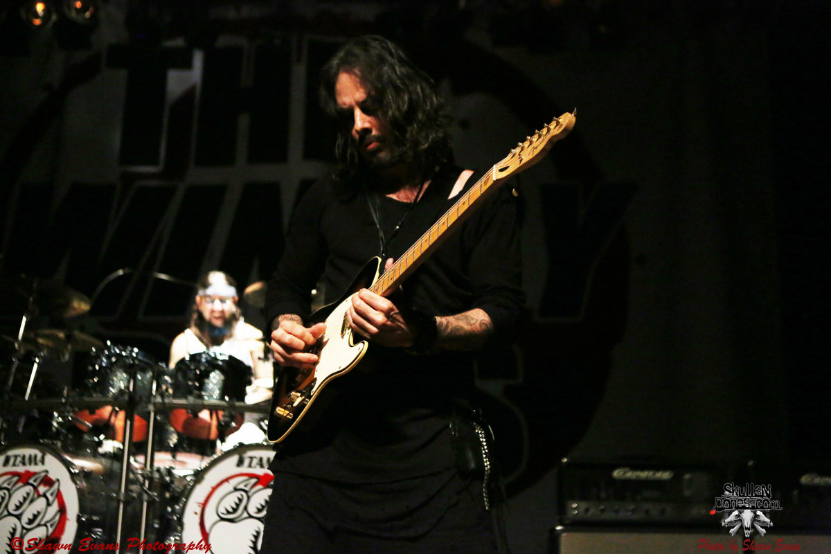Winery Dogs 11