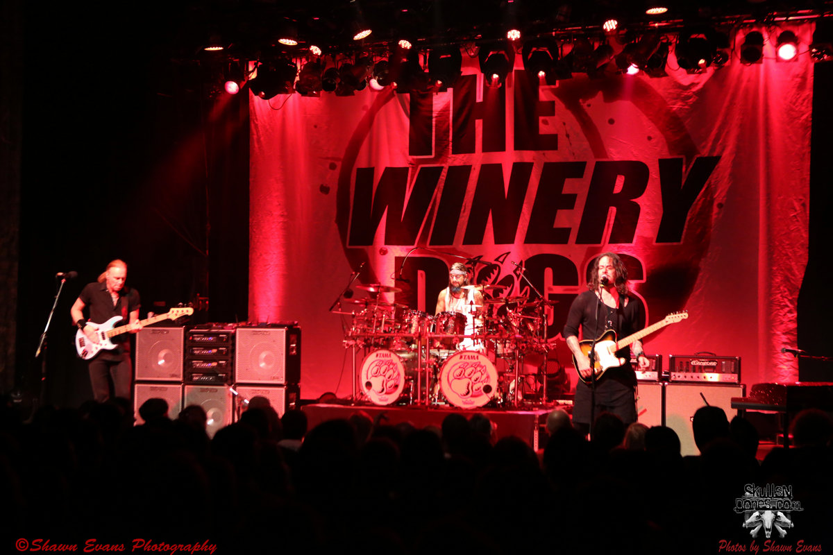 Winery Dogs 17
