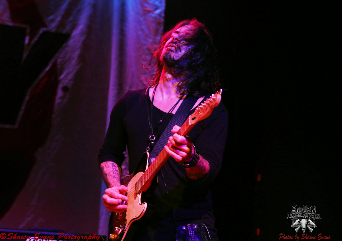 Winery Dogs 21
