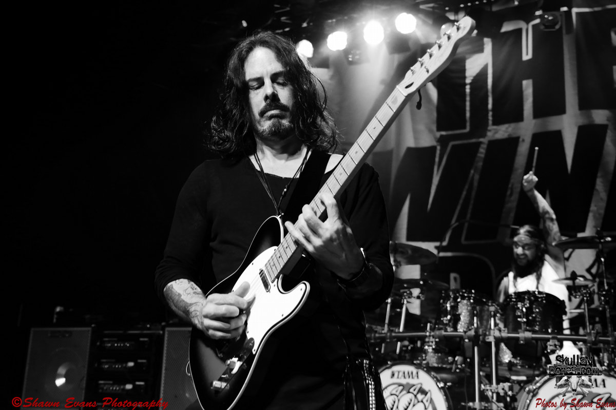 Winery Dogs 30