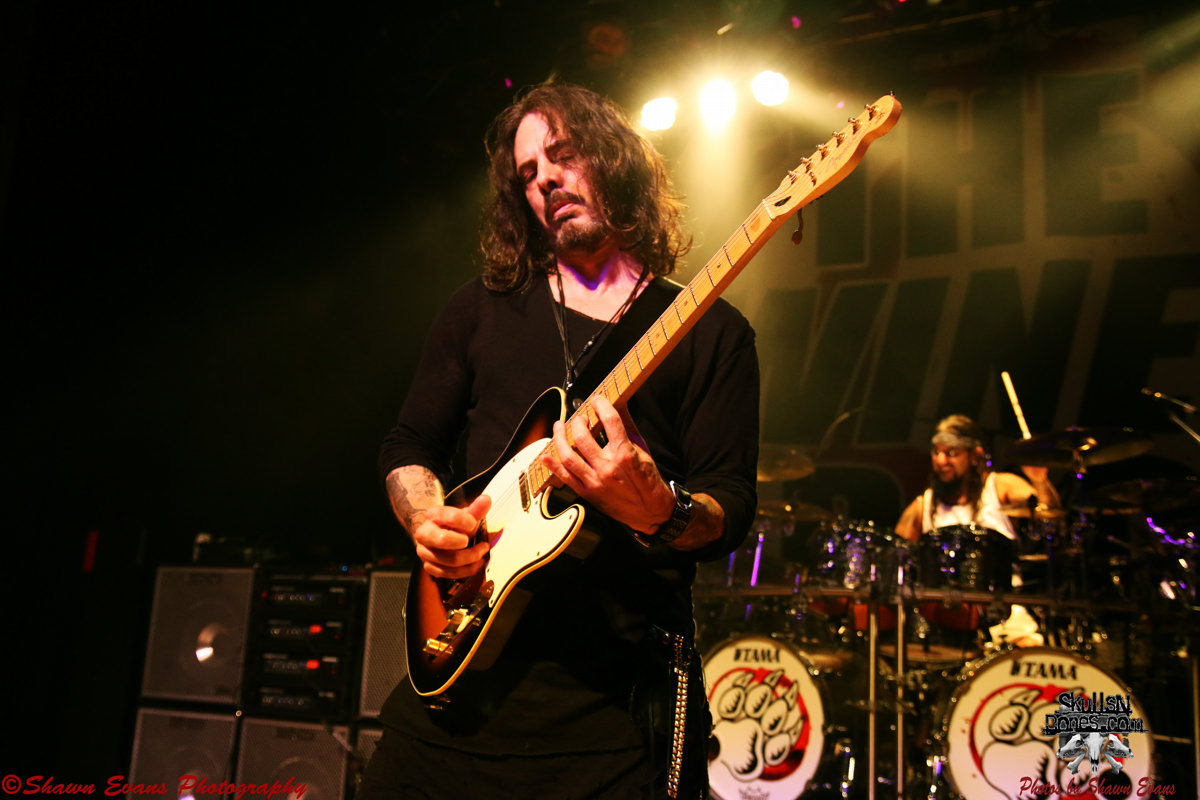 Winery Dogs 31
