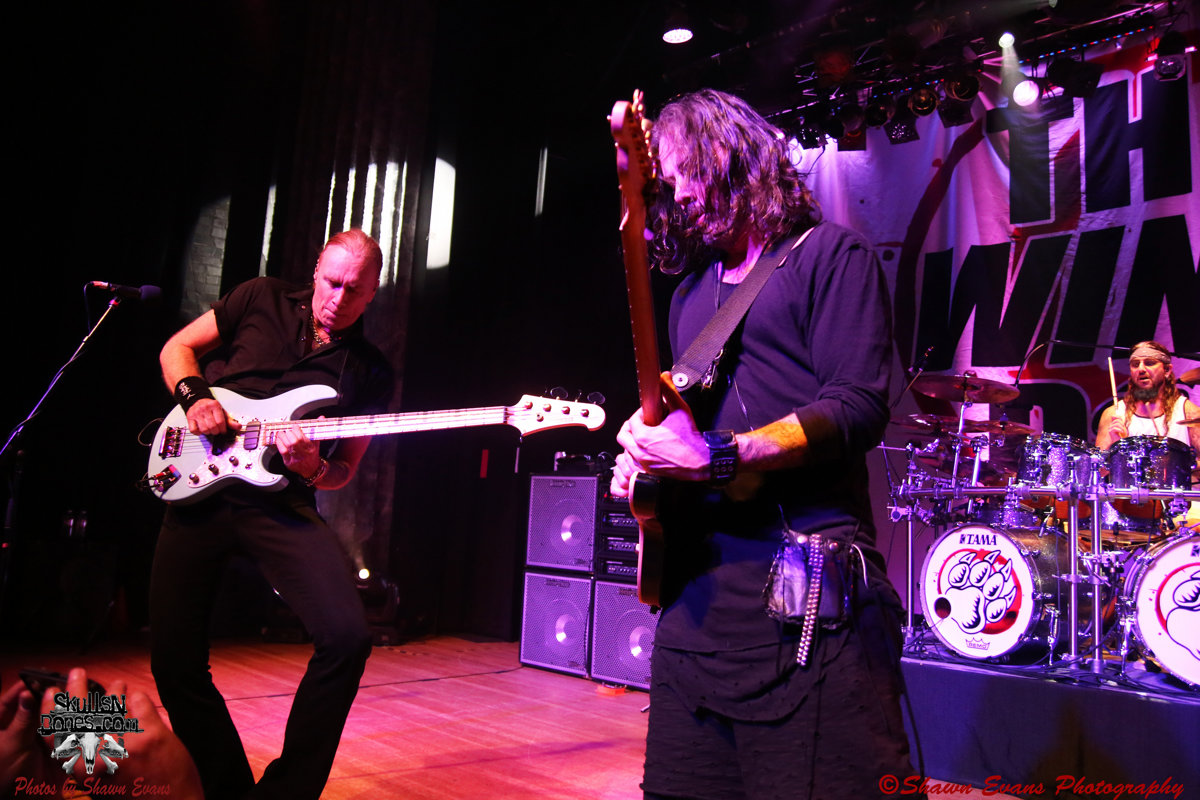 Winery Dogs 33