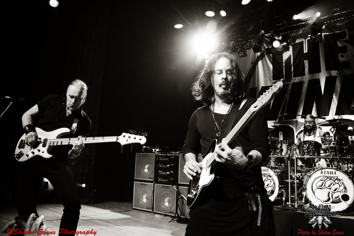 Winery Dogs 34