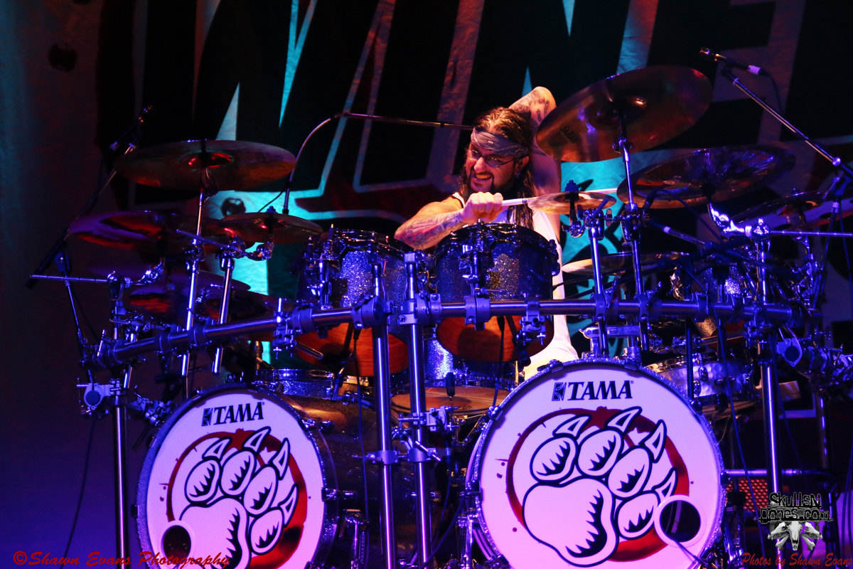Winery Dogs 36