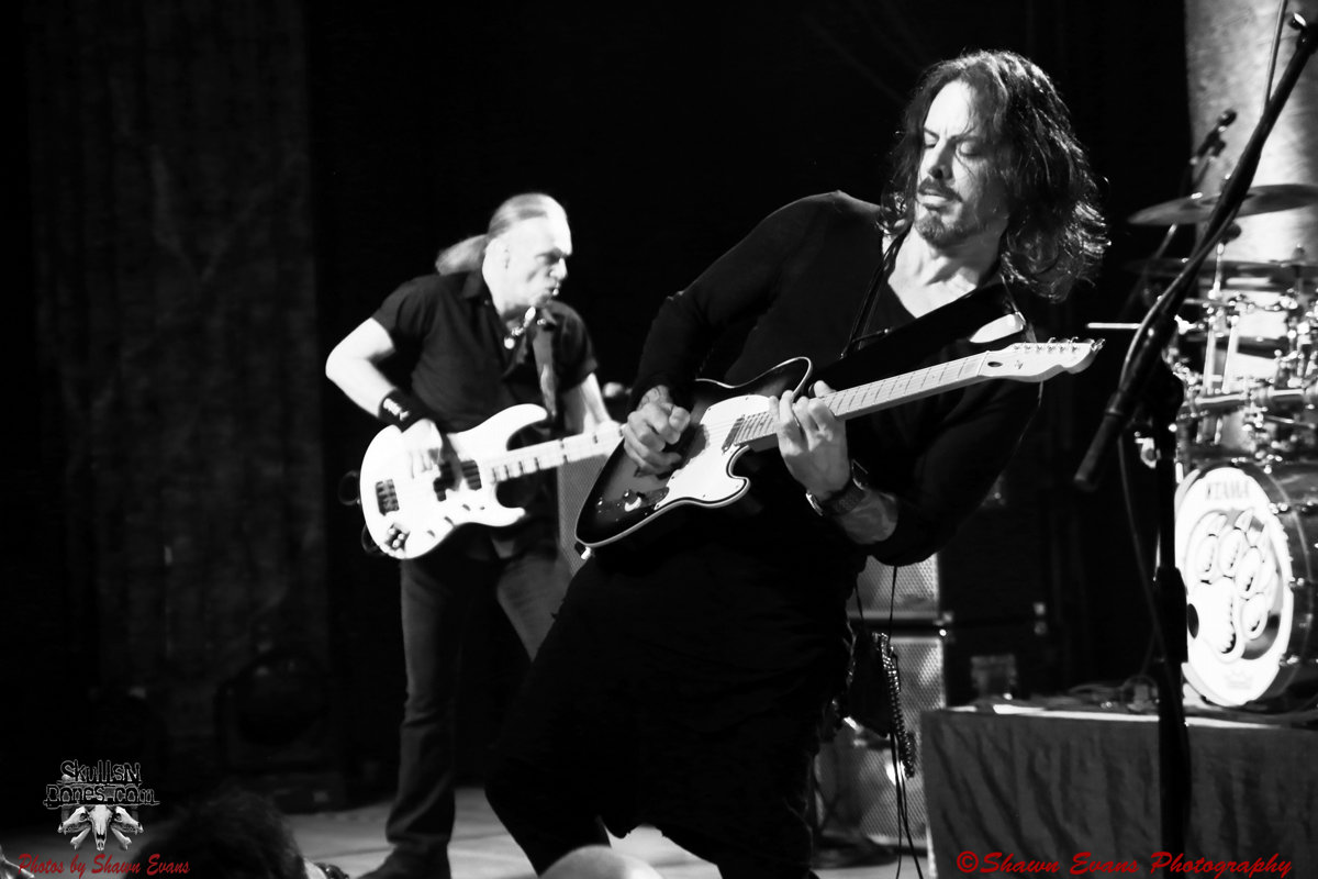 Winery Dogs 37
