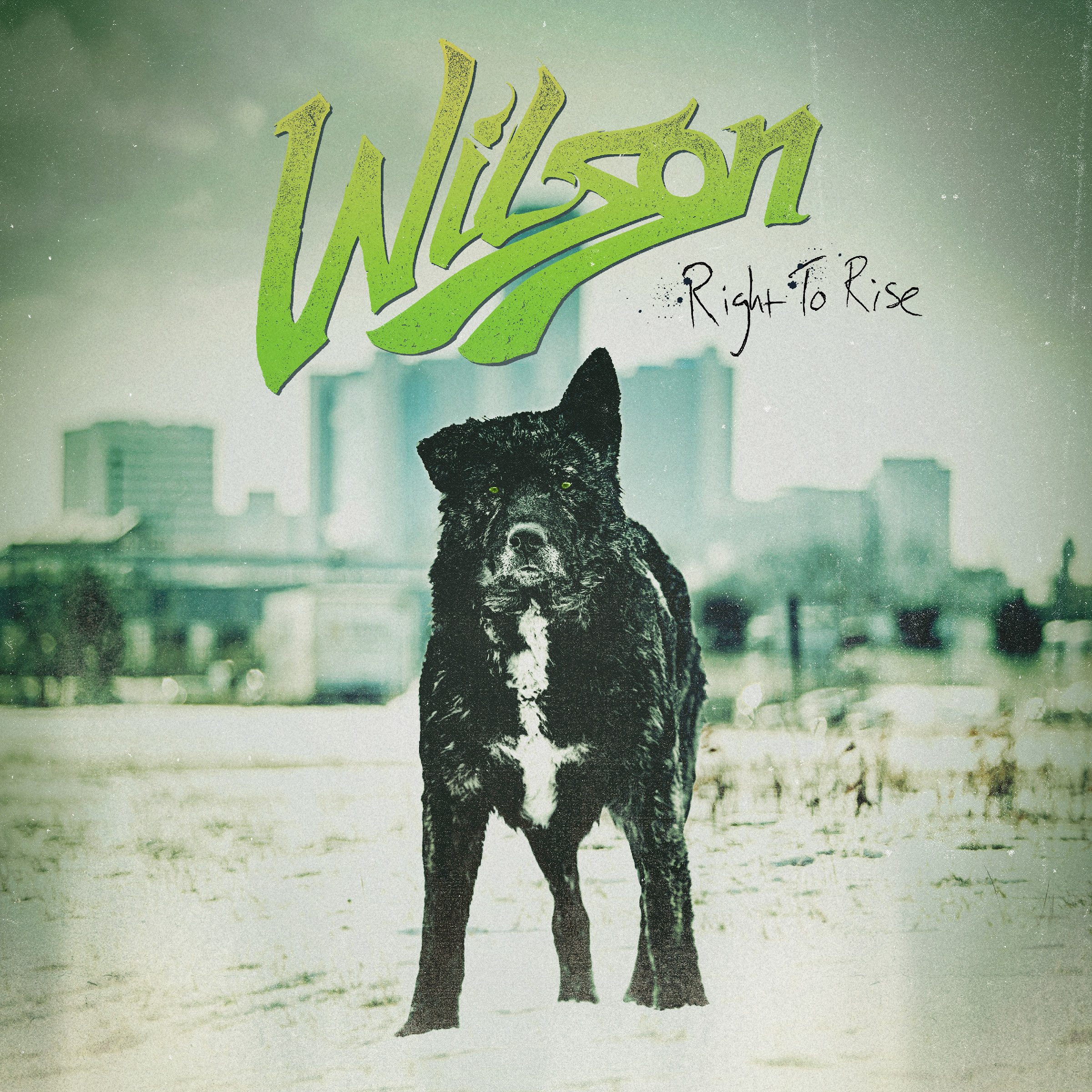 wilson-RGHT2RISE_2400