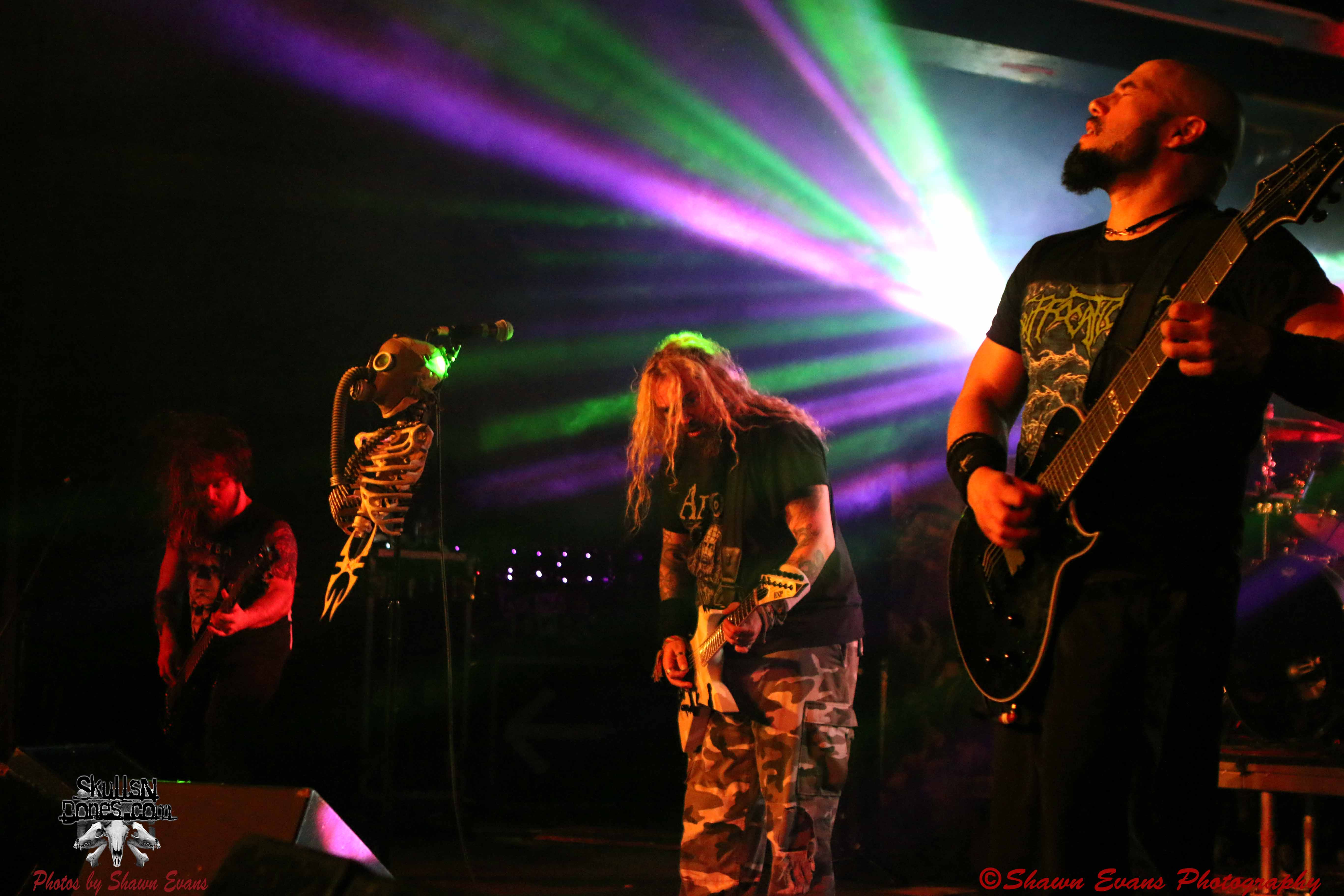 Soulfly 10