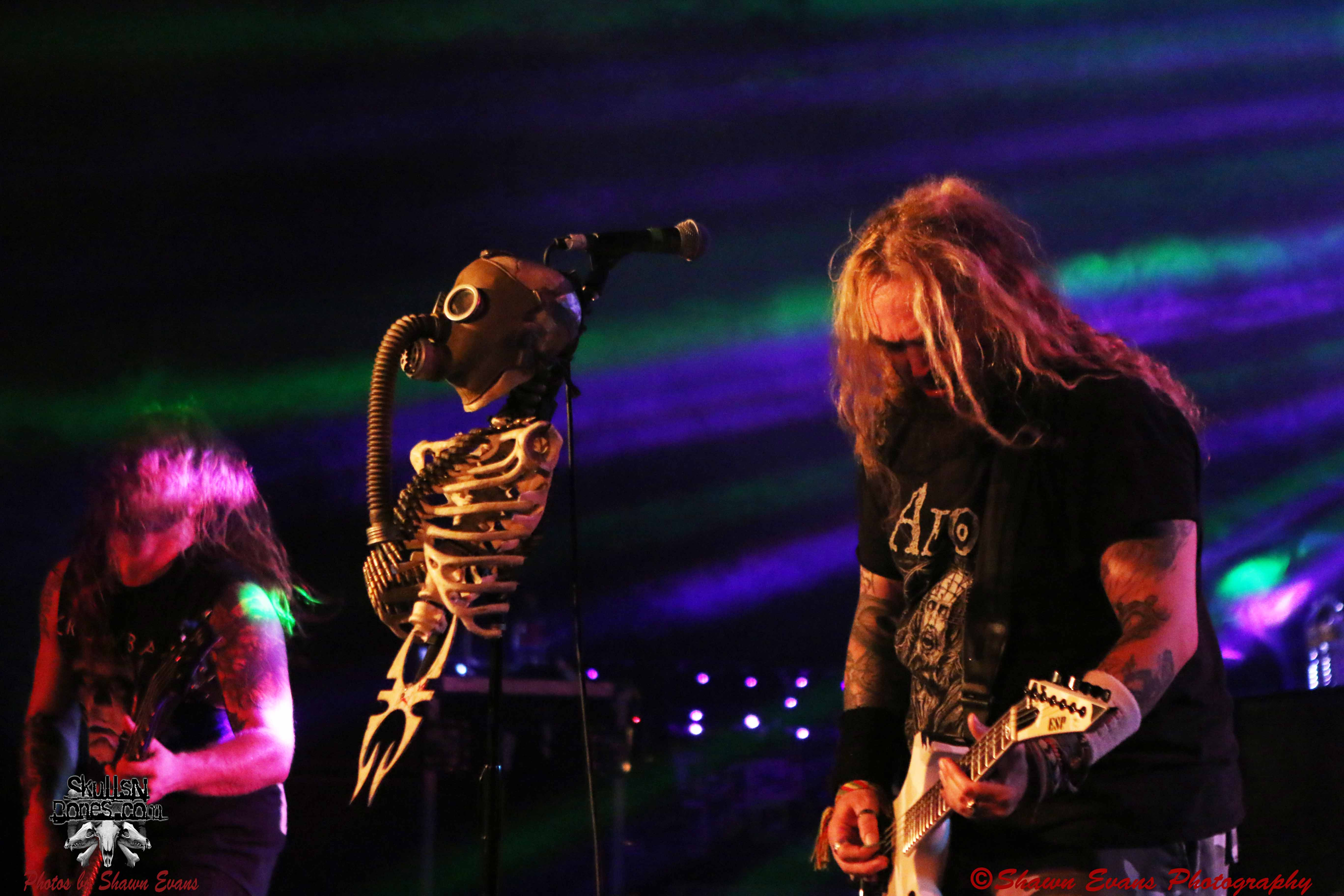 Soulfly 11