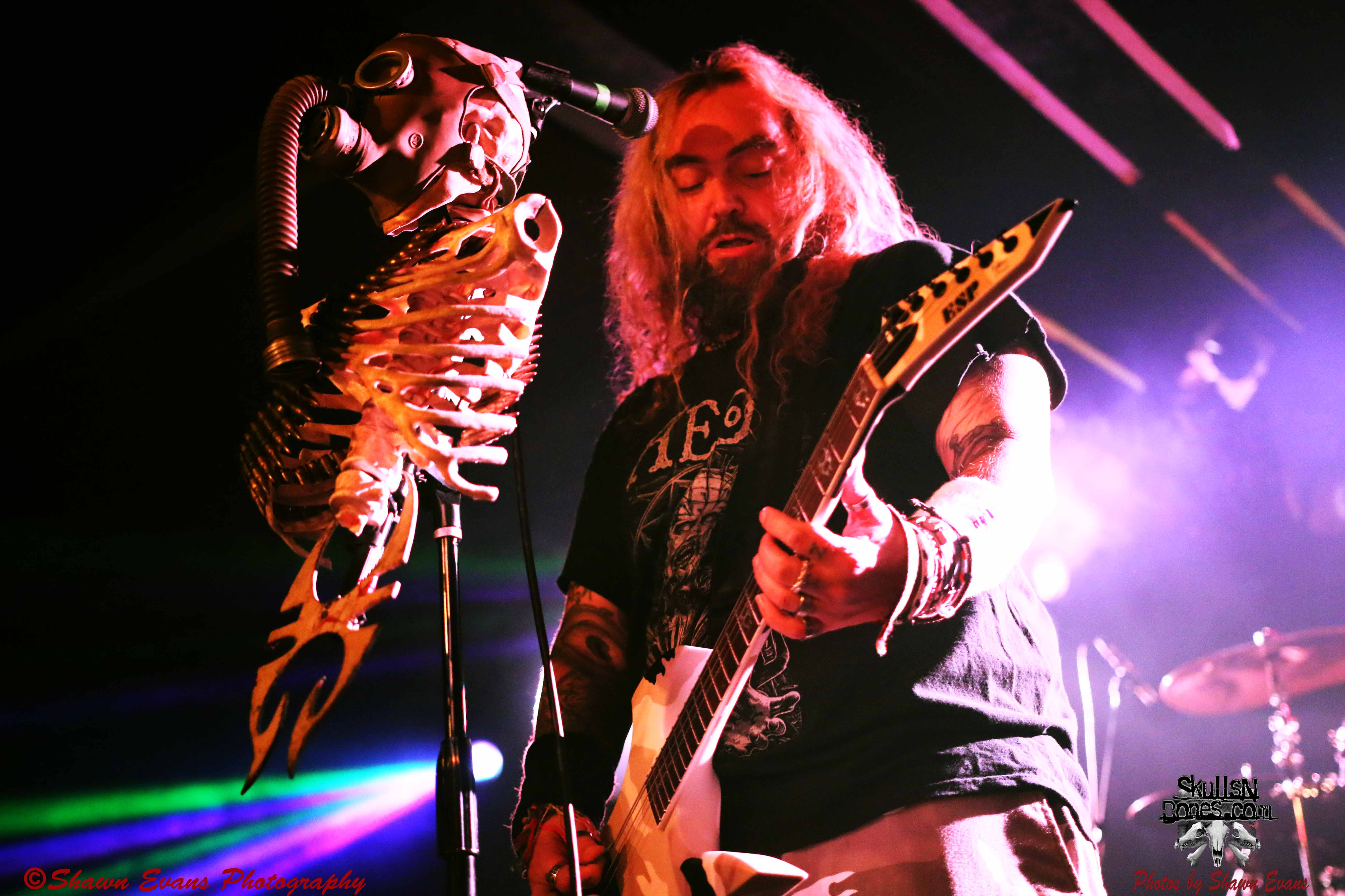 Soulfly 22
