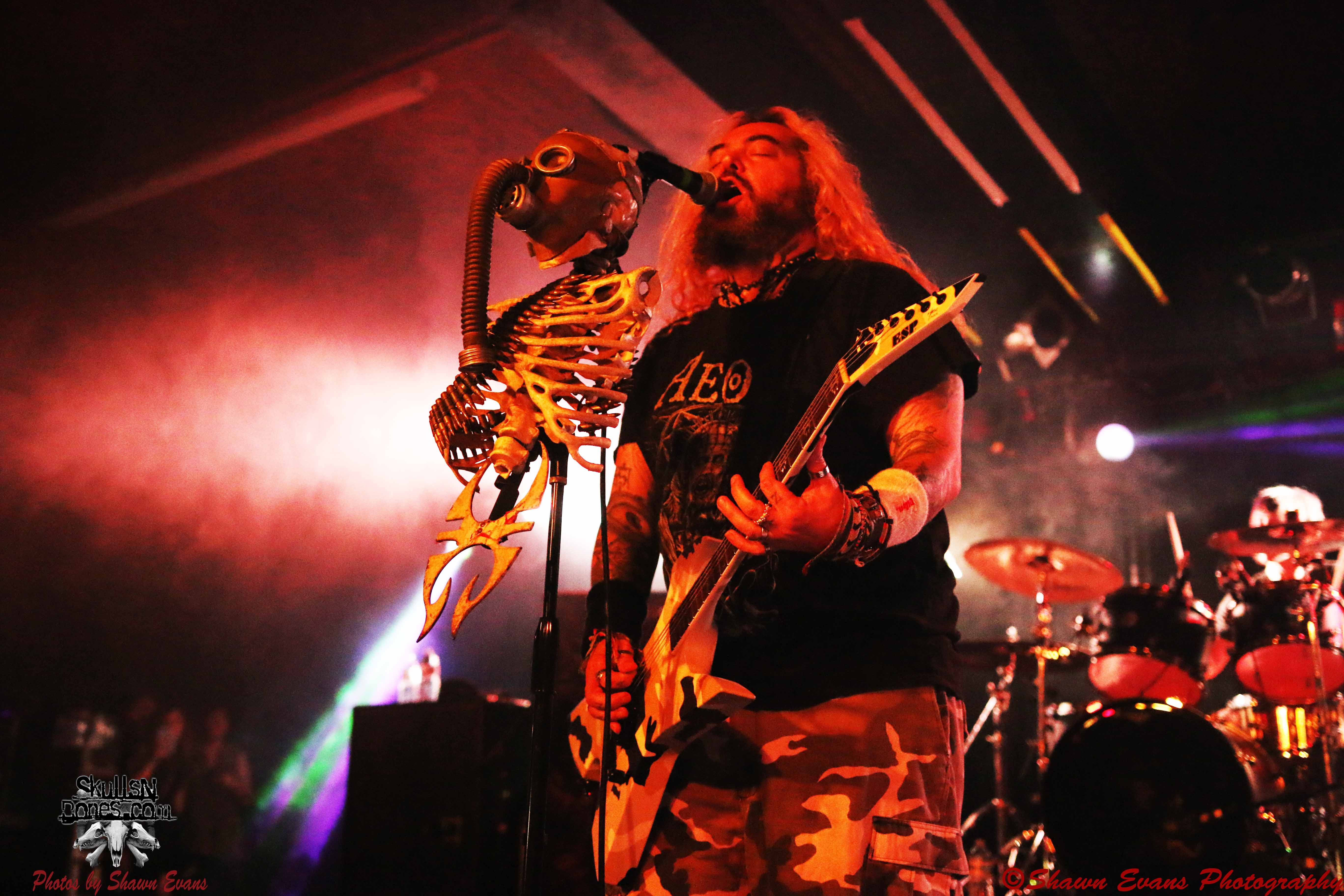 Soulfly 27