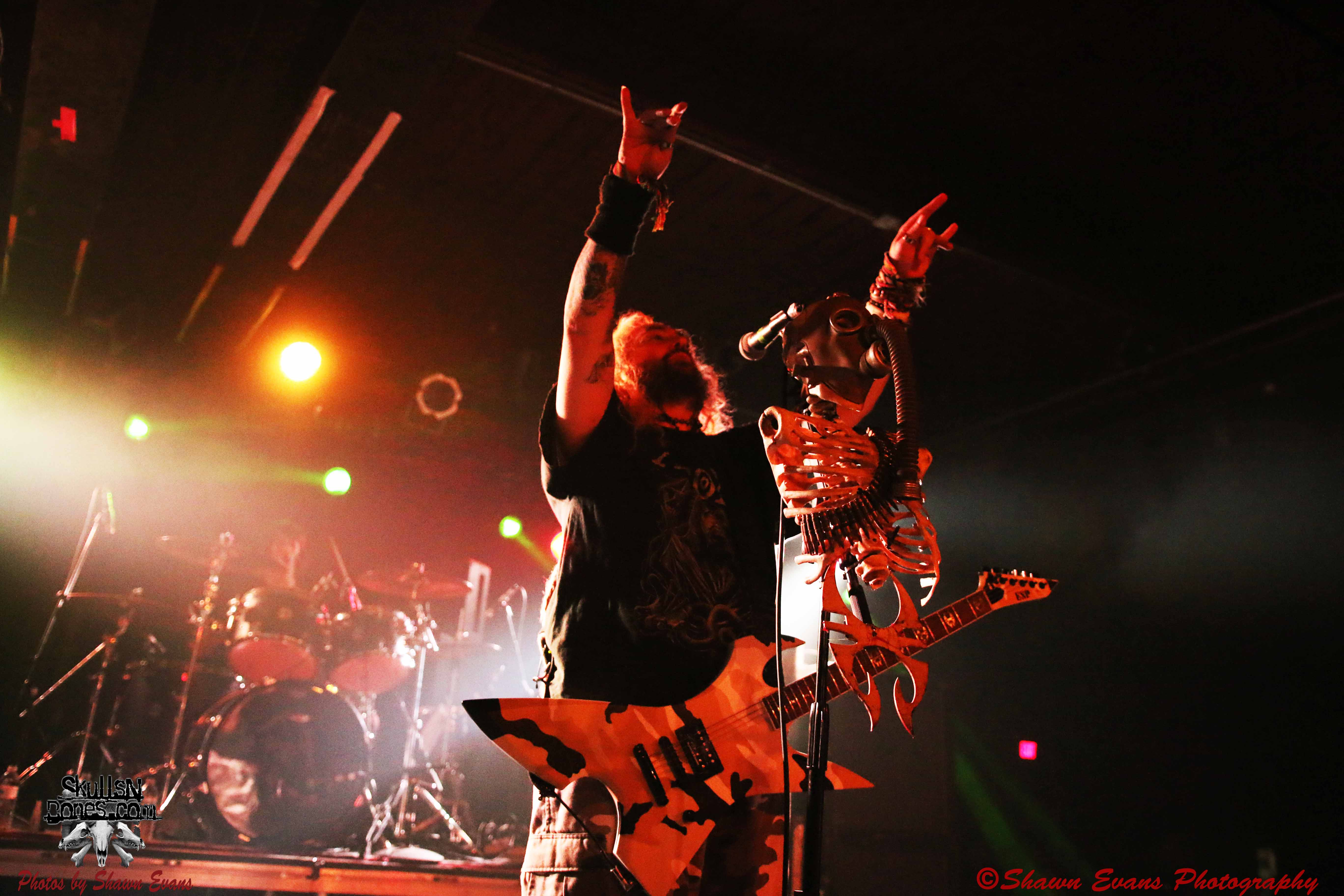Soulfly 29
