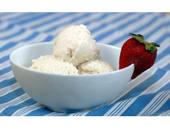 Dukan Diet Fat Free And Sugar Free Ice Cream recipe
