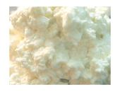 Hcg Diet Cottage Cheese recipe