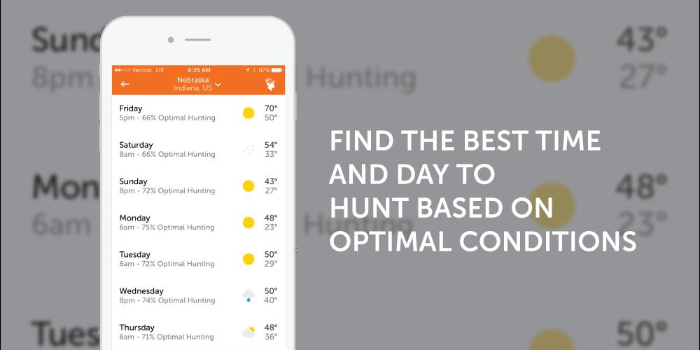 Optimal Hunting 1