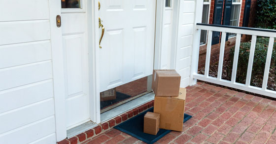 Parcel Delivery Thieves