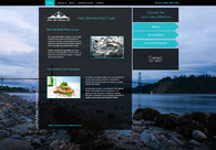A great web design by Snaptech Marketing