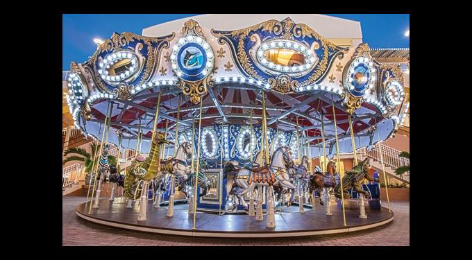 carousel carnival south florida finds