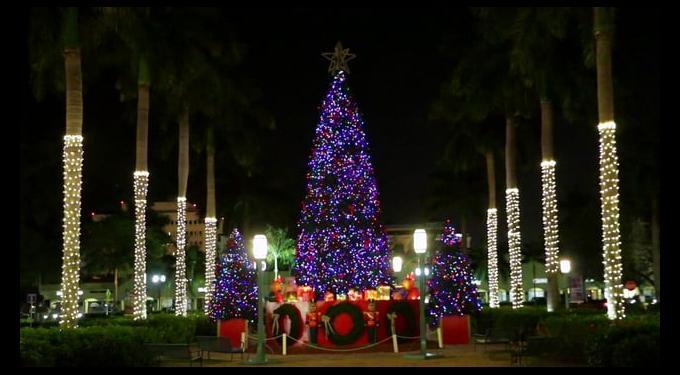 boca raton holiday tree lighting south florida finds