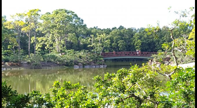 Morikami Museum and Japanese Gardens | South Florida Finds
