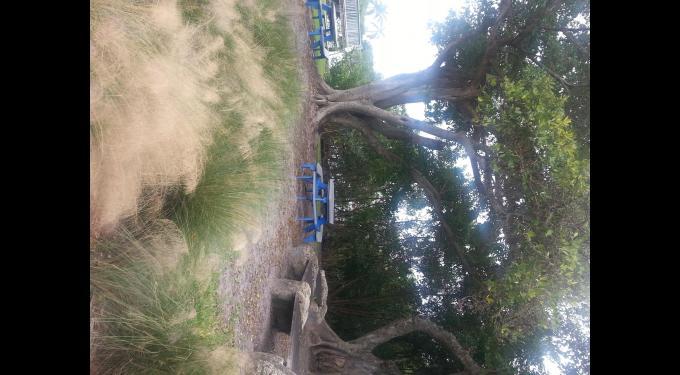 Jaycee Park Boynton Beach Fl