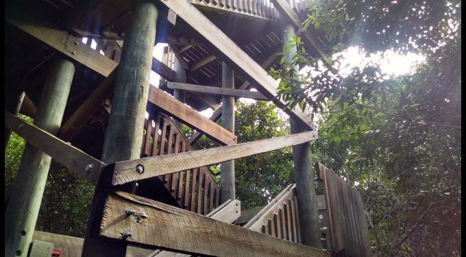 Gumbo Limbo Nature Center