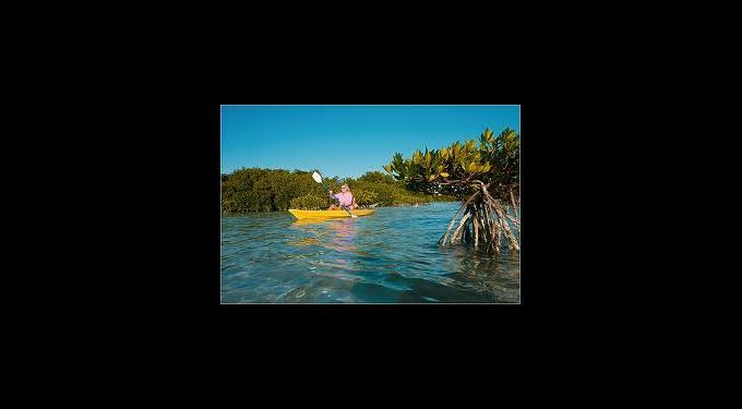 Kayak Lake Worth