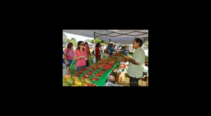 Coral Springs Farmer's Green Market