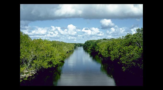 Everglades National Park Homestead Florida City Area