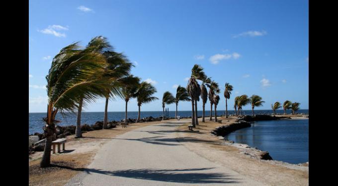 matheson hammock park  u0026 beach matheson hammock park  u0026 beach   south florida finds  rh   southfloridafinds