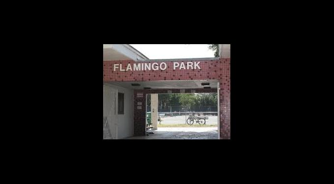 Flamingo Park Pool