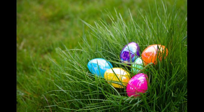 Palm Beach Gardens Egg Extravaganza | South Florida Finds