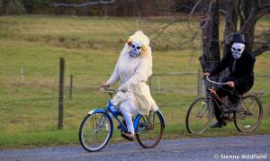 bike_halloween