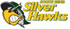 South Bend Silver Hawks logo