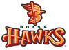 Boise Hawks logo