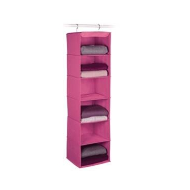 Expressive Storage/Honeysuckle 6 Shelf Sweater Organizer by Richards