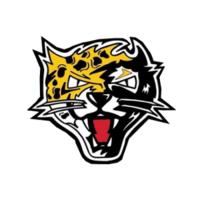 Jaguars1