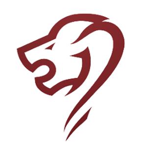 LIONS BOURDEAUX