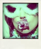 Gaga_flint_white-pola