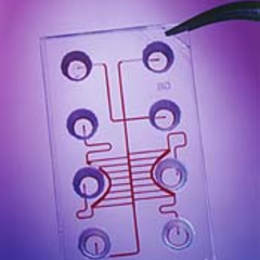 Lab on a Chip in Healthcare Photo