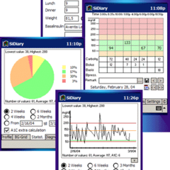 Diabetes Management Software and Apps Photo