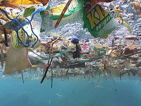 The Plastic Island Is A Masive Trash In Atlanic Ocean And Pacific One