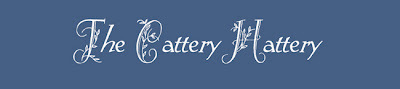 Catteryhattery_blogger_preview