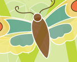 Abc_insects_crop_m_-_profile_image_thumb