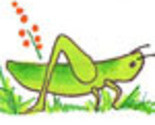 Grasshopper2copyavatar_thumb