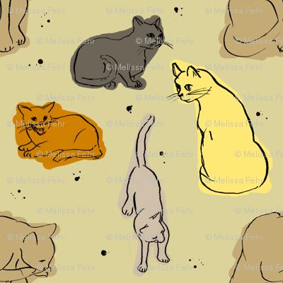 Vortex the cat