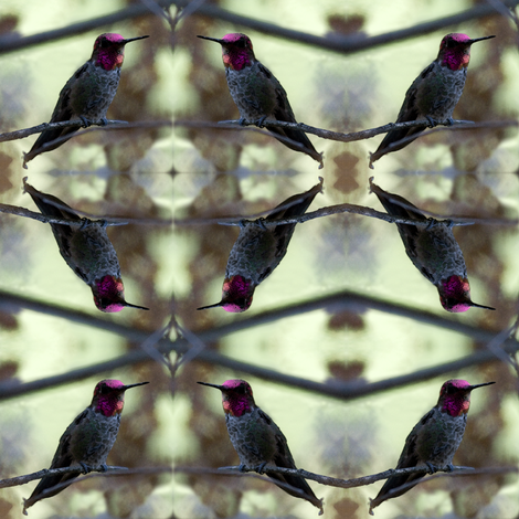hummingbird fabric by trollop on Spoonflower - custom fabric