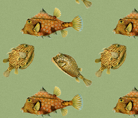 Math Feesh  fabric by hippopo_vintage on Spoonflower - custom fabric