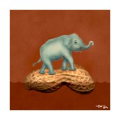 Rr15inch_0004_elephant_shop_thumb