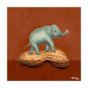 Rr15inch_0004_elephant_shop_thumb